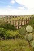 Aqueduct and prickly pear — ストック写真