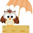Owl on wooden sign with umbrella — Stock Vector