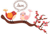 Love Birds in Cherry Tree — Stock Vector