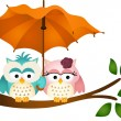 Owls under umbrella — Stock Vector