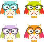 Lovely Owls with Glasses — Stock Vector