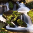 Cascade with Mossy Rocks — Stock Photo #24750291