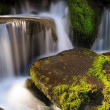 Smoky Mountains Cascade — Stock Photo #24750361