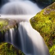Smoky Mountains Cascade — Stock Photo #24750373