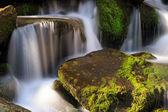 Smoky Mountains Cascade — Zdjęcie stockowe