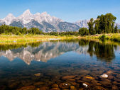 Snake River Reflection — Stock Photo