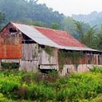 Foggy Morning Barn — Stock Photo