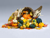 Cornucopia of Thanksgiving — Stock Photo