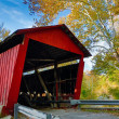 Covered Bridge and Sycamore Tree — Stock Photo