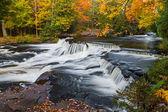 Obere Anleihe fällt im Herbst — Stockfoto