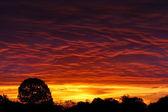 Sunrise Intensity — Stock Photo