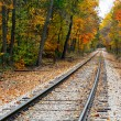 Autumn Railroad Tracks — Stock Photo