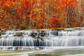 Autumn at Upper Cataract Falls — Stockfoto