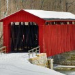 Cataract Covered Bridge and Snow — Stock Photo