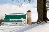 Winter Barn and Silo — Stock Photo