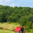 Red Roof Barn — Stock Photo