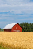 Red Barn in Field — Stock Photo