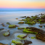 Coquina Stone Beach at Sundown — Stock Photo #44959231