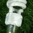 Stock Photo: Energy saving light bulb on green grass