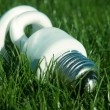 Energy saving light bulb on green grass — Stock Photo #15791315