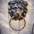 Door Knocker — Stock Photo #18862109