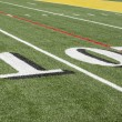Stock Photo: Americfootball field astro turf