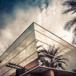 Modern office building with glass mirror window reflecting palm tree — Stock Photo