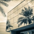 Stock Photo: Modern office building with glass mirror window reflecting palm tree