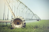 Farm's crop being watered by sprinkler irrigation system — Foto de Stock