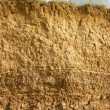 Foto de Stock  : Soil structure