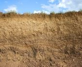 Soil structure — Foto Stock