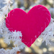 Stock Photo: Pink heart on frozen branch
