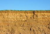 Soil cross section — Stock Photo