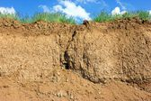 Soil cross section, grass and sky — Stock Photo