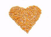 Grains de maïs — Photo