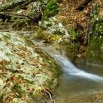 Autumn mountain river — Stock Photo #12709828