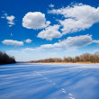 Stock Photo: Winter plain