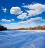 Winter plain — Stock Photo