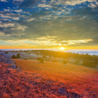 Stock Photo: Early morning in steppe