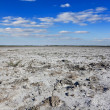 Saline land panorama — Stock Photo