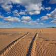 Road in a sand desert — Stock Photo