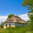 Rural house in a village — Stock Photo #13319688