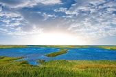 早朝の湖のシーン — ストック写真