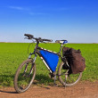 Stock Photo: Bicycle among fields