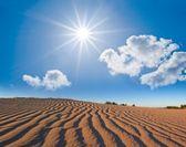 Sandig öken under en sparkle sol — Stockfoto