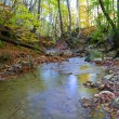 Stock Photo: Quiet mountain river