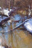 River in a winter forest — Stock Photo