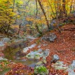 Autumn river in a mountain canyon - Stock Photo