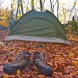 Touristic tent in autumn forest — Foto Stock #14044849