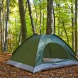 Touristic tent in a autumn forest — Stock Photo #14150344
